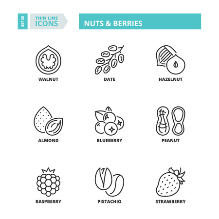 Flat symbols about nuts & berries. Thin line icons set. Çizim