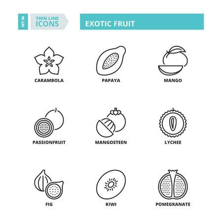 exotic fruit: Flat symbols about exotic fruit. Thin line icons set.