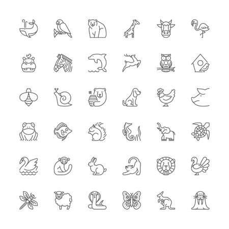 Thin line icons set. Flat symbols about animals