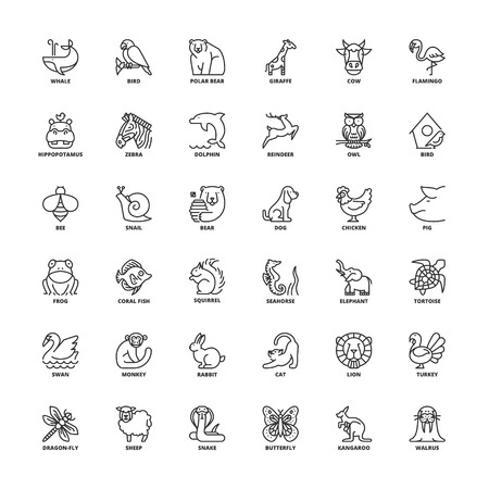 Outline icons set. Flat symbols about animals