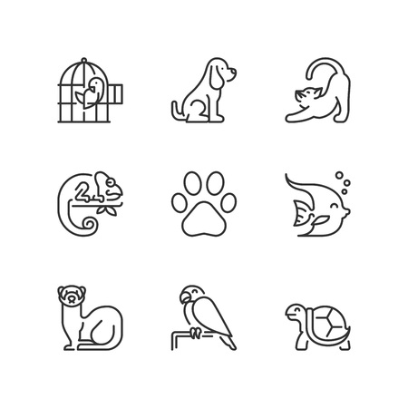 Outline icons about pets Illustration