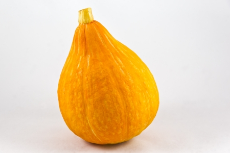hokkaido: little orange Hokkaido pumpkin on a white background