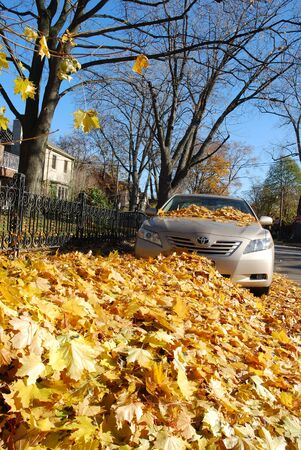 Boston, USA, October 2008 - big pile of leaves almost covering parked car