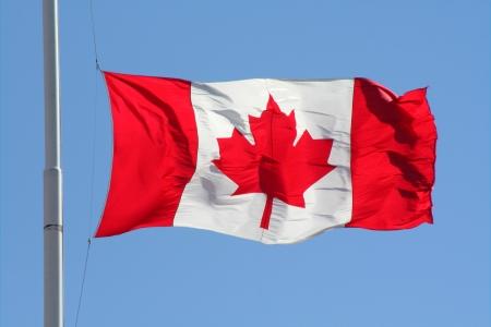 Canadian maple leaf flag Editorial