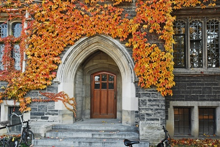 ivy league: College door with fall ivy, University of Toronto, 2009