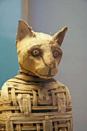 mummified: Egyptian Cat Mummy, British Museum, London, 2007 Editorial
