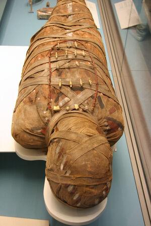 mummified: Egyptian Mummy, British Museum, London, 2007