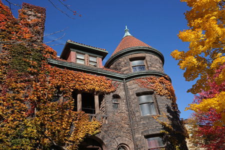 ivy league: college building with colorful ivy in fall