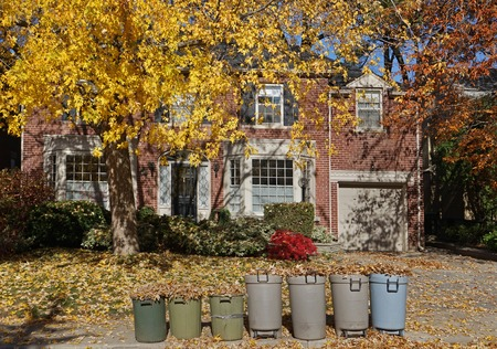 front yard: front yard of house with row of garbage cans full of collected leaves