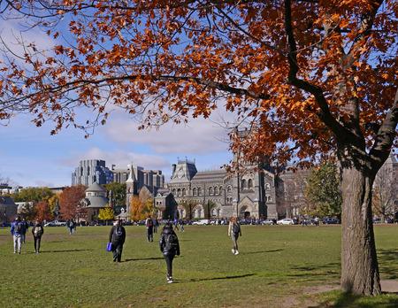 roble arbol: roble en colores brillantes del otoño en campus universitario