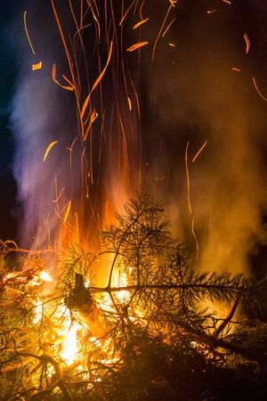 hellfire: Burning Pine Branches Night Campfire Flying Sparks Flame and Smoke