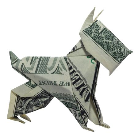 Money Origami Mini SCHNAUZER Dog Pet Folded with Real One Dollar Bill Isolated on White Background Banque d'images