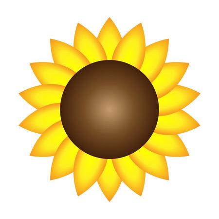 Geïsoleerde zonnebloem Vector Stock Illustratie