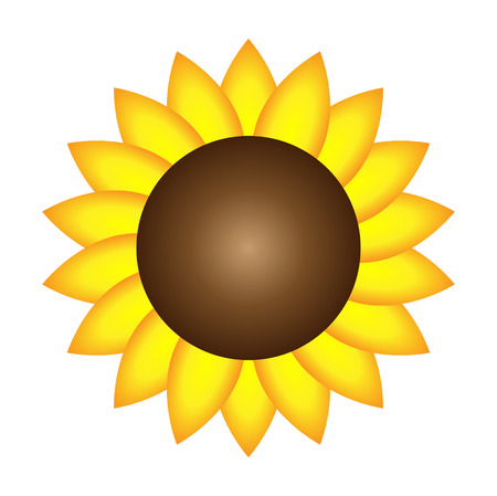 Isolated sunflower Vector