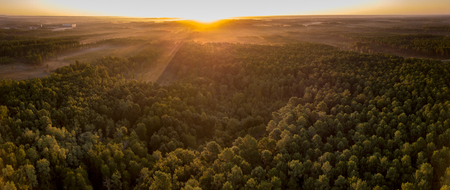Sunset, Forest from the Dune du Pilat, the biggest sand dune in Europe, France, Arcachon Basin, Aquitaine Stock Photo