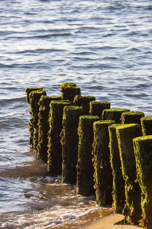 Piles To Stabilize The Beach Of Cap Ferrets Point And The Dune Of Pilat, France
