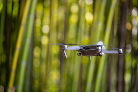 Drone nella piantagione di bambù, fondo di struttura del recinto di bambù verde, struttura di bambù