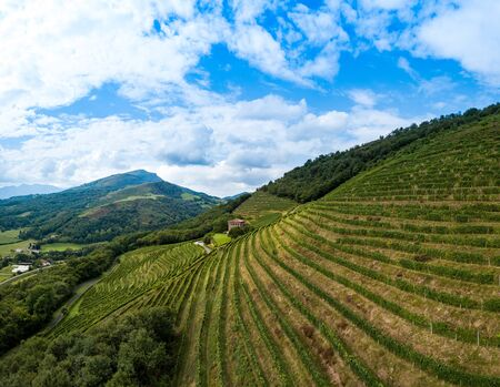 Irrouleguy Vineyards in the Basque country, France, Europe