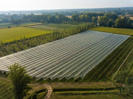 Aerial View of Greenhouse, Landscape Agriculture, France, Europe