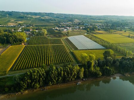 AERIAL VIEW OF AN AGRICULTURAL LANDSCAPE NEAR THE GARONNE RIVER, COUNTRYSIDE, ENVIRONMENT, SAINT PIERRE DAURILLAC, GIRONDE, NEW AQUITAINE, FRANCE