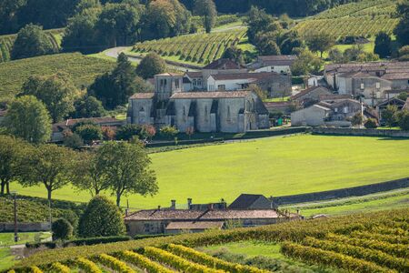 Cognac vineyard, village and Saint Preuil Church, vintage great champagne, Charente, France 스톡 콘텐츠