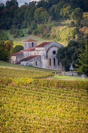 France, Charente, Bouteville, Cognac vineyard, village and Saint Paul Church