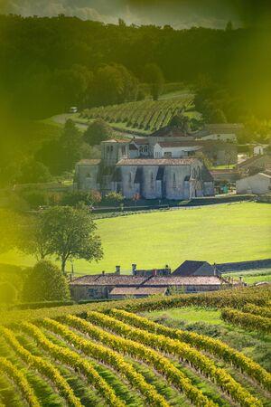 Cognac vineyard, village and Saint Preuil Church, vintage great champagne, Charente, France Zdjęcie Seryjne