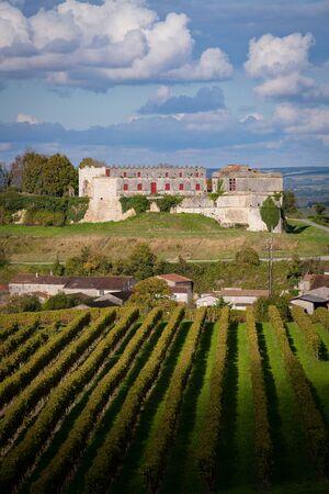 France, Charente, Bouteville, Cognac vineyards, Castel Bouteville