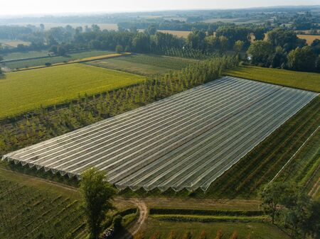 Aerial View of Greenhouse, Landscape Agriculture