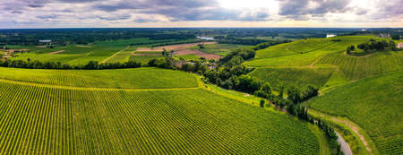 Aerial view, Sunset landscape, Bordeaux wineyard, Langoiran, Gironde, France