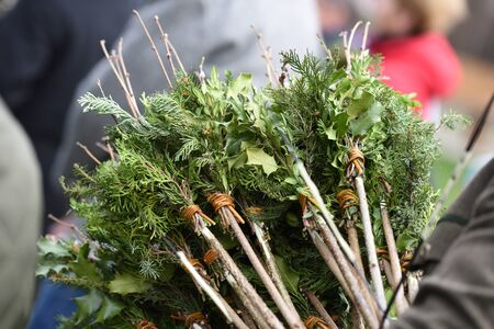 Twigs of willow catkins that will be tied, decorated, and consecrated on Palm Sunday