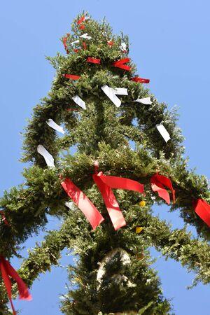 玛利勃起在林茨在多瑙河(上奥地利奥地利,奥地利) -  Maypole是一个装饰的树木或树干,在5月1日(通常是4月30日)在村庄或城镇广场的奥地利。-  Maiypole在林茨in in ant奥地利,奥地利奥地利) - 梅帕尔是一个装饰的树或树干,将于5月1日(通常是4月30日)在村庄或城镇广场的奥地利。