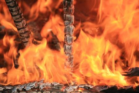 image of burning fire with burnt firewood macro photo