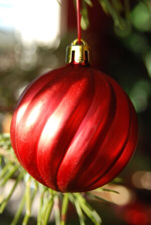 A red ball hanging on a christmas tree