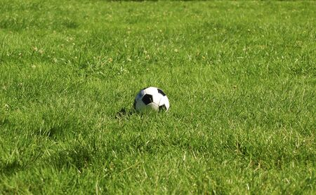 A soccer ball in a green lawn