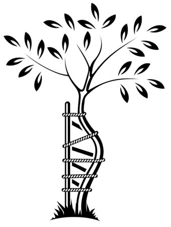 young tree: The symbol of orthopedics and traumatology.