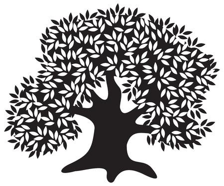 olijf: Silhouet van de oude olijf boom Stock Illustratie