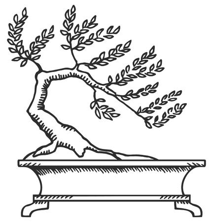 Bonsai. Zwart-wit tekening van een kleine boom.