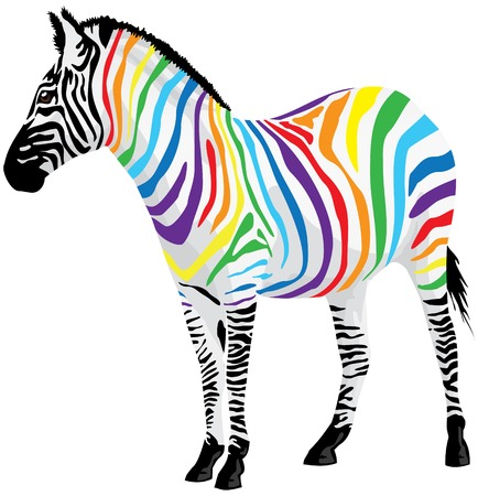 herbivore: Zebra. Strips of different colors. illustration.