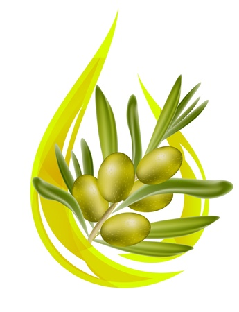 olijf: Olijfolie. Gestileerde druppel olie en olive branch binnen. Vectorillustratie. Stock Illustratie