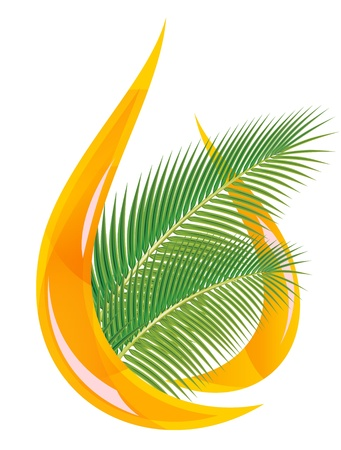 Palm oil. Stylized drop of oil and palm leaves. Vector illustration. Vector