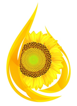 oil drop: unflower oil. Stylized drop of oil, and sunflower.