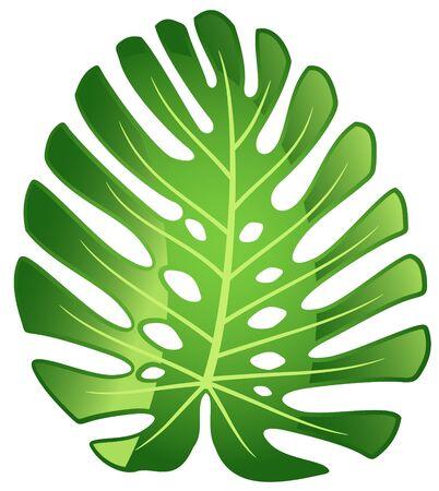 Blad tropische plant - Monstera. Vectorillustratie.