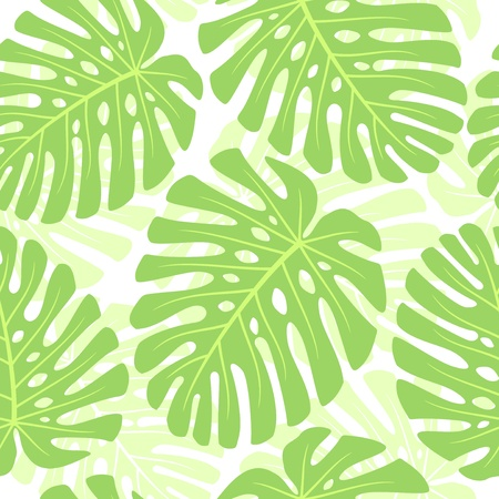 monstera: Leaves of tropical plant - Monstera. Seamless vector background.