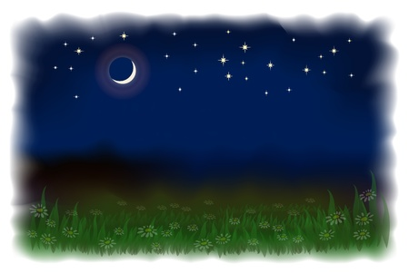 Meadow with daisies. Night landscape with the moon and stars. Vector illustration imitating watercolor.