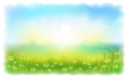 blue sky and fields: Sun-drenched meadow with daisies. Sunny summer day outdoors. Vector illustration Simulating watercolor..