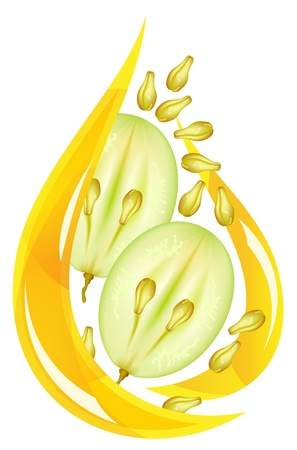 grape seed: Grape seed oil. Stylized drop on a white background. illustration. Illustration
