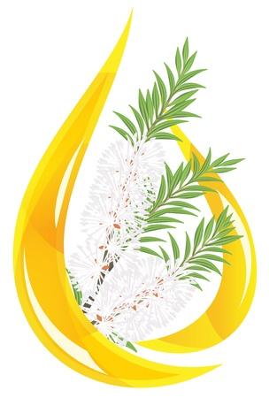 essential: Melaleuca - tea tree.  Stylized drop of essential oil.