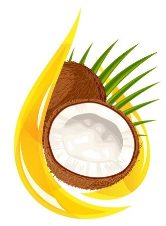 aceite de coco: El aceite de coco. Caída estilizada. Vectores
