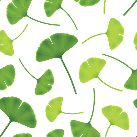 phytotherapy: Leaves of ginkgo bilboa. Seamless illustration.